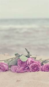 #Roses on the #beach! A great Combination for you # ...