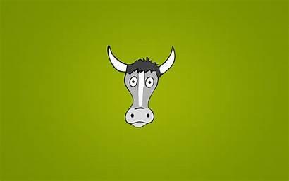 Cartoon Cool Funny Wallpapers Cow Backgrounds Desktop