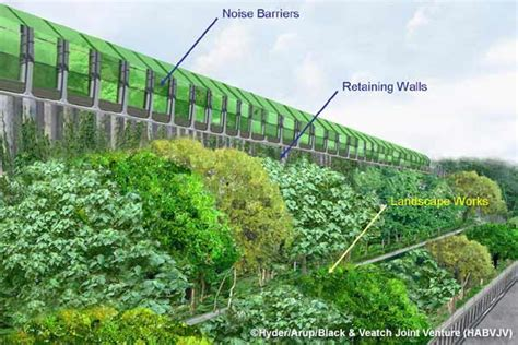 sound barrier shrubs top 28 sound deadening plants 25 best ideas about noise reduction on pinterest cyprus