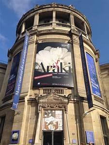 Araki Musée Guimet : atoy exhibition araki in the guimet museum paris divisare ~ Maxctalentgroup.com Avis de Voitures
