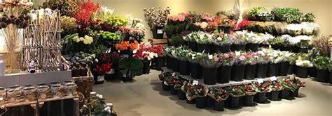 van beest bloemen en planten amersfoort bloemist amersfoort van beest bloemen en planten
