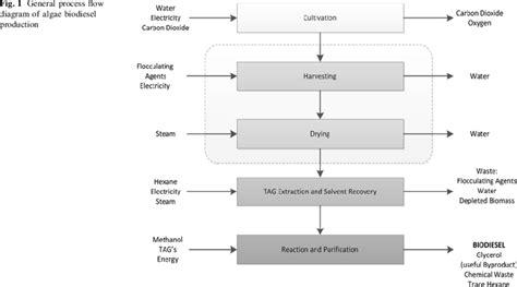 Biofuel Engine Diagram by General Process Flow Diagram Of Algae Biodiesel Production