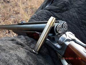 Elephant Gun Ammo