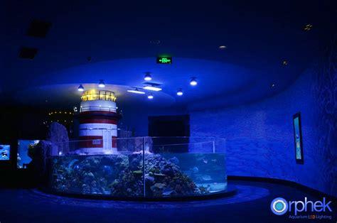 led light projects chengdu aquarium led light project orphek