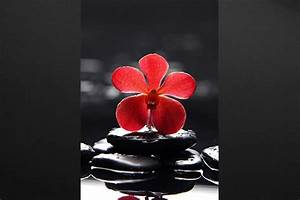 Tableau zen Perles de Silence Izoa