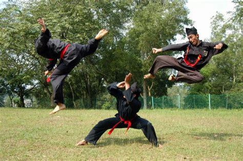 pencak silat indonesia seni bela diri nusantara  mendunia