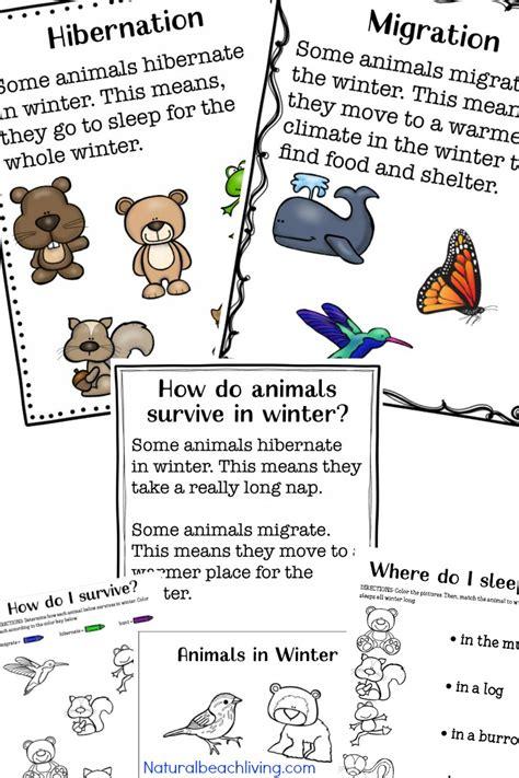 winter animals for preschool activities living 801 | winter animals for preschool pin