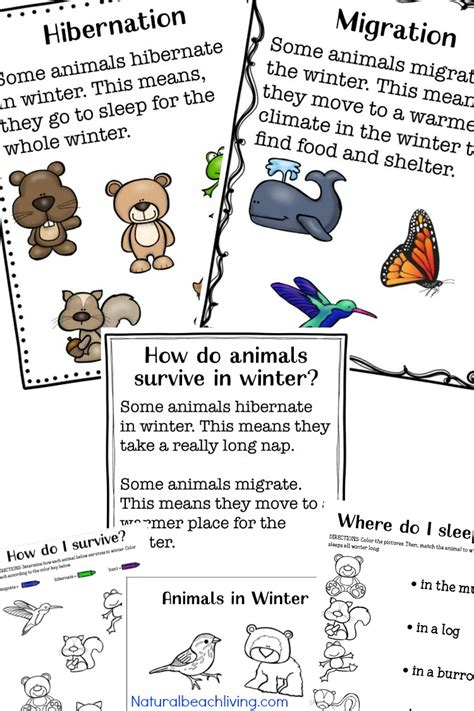 HD wallpapers free ocean worksheets for kindergarten