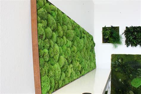 Vertikaler Garten Indoor by Vertikaler Garten Pflanzen Vertikal Anbauen