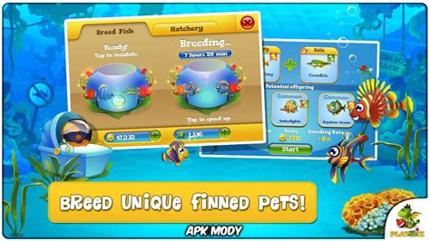 pocket fishdom  money mod apk  apk mody