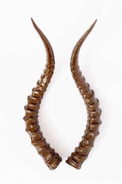 Horn Impala Moulds Horns