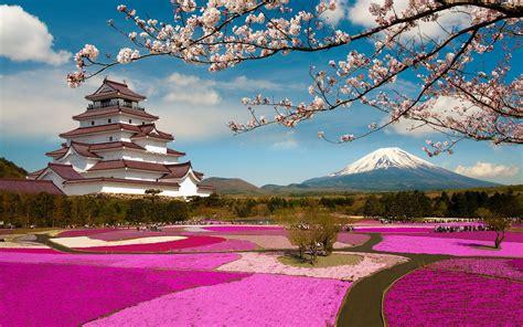 viaje  japon cerezos en flor el monte fuji  los banos