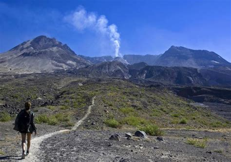 randonn 233 es excursion au mont helens et randonn 233 e sur les terres volcaniques