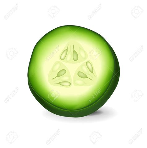 cucumber slice clipart cucumber slice clip clipground