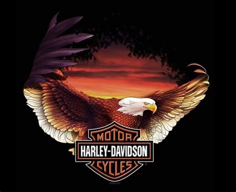 harley davidson motorcycle bikers graphics  facebook tagged facebook tumblr