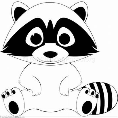 Clipart Coloring Racoon Outline Raccoon Dibujos Colorear