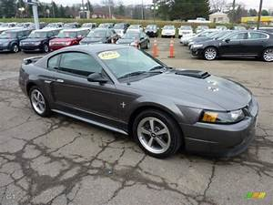 2003 Dark Shadow Grey Metallic Ford Mustang Mach 1 Coupe #47767311 Photo #6 | GTCarLot.com - Car ...