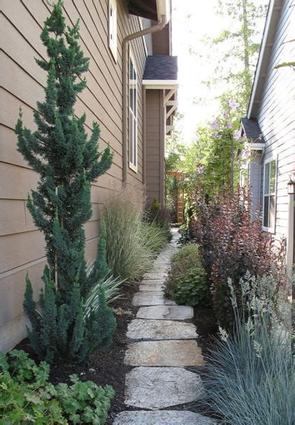 landscaping narrow spaces landscape by le jardinet