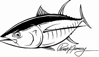 Tuna Stickers Fish Fishing Boat Drawings Decals