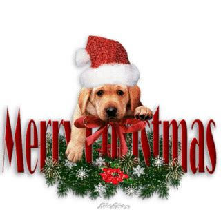merry christmas images with dogs uncategorized inglese al classico quot volta quot page 3