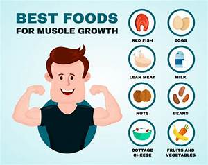 Best Foods For Muscle Growth Infographic