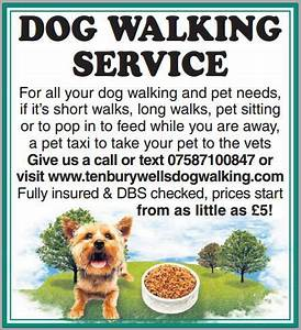 1000+ images about Tenbury Wells Dog Walking & Pet Care ...