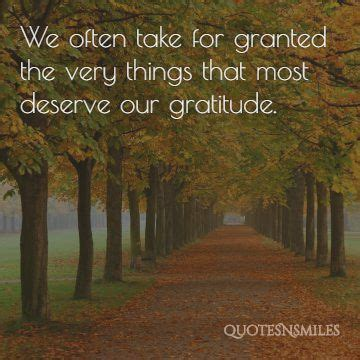 images  gratitude picture quotes famous quotes