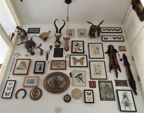 Taxidermy Home Decor: Preservation Instinct... Taxidermy, Death, Skulls
