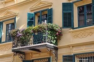 Balkonpflanzen Herbst Winter : balkonpflanzen im herbst 30 blumen f r august september oktober ~ Sanjose-hotels-ca.com Haus und Dekorationen