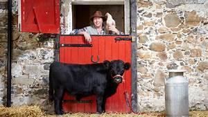 Archie - the world's Shortest Bull - video | Guinness ...