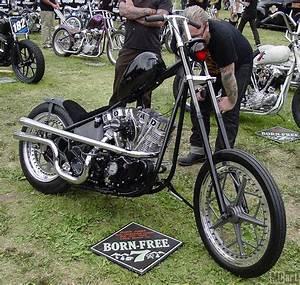 Mc Art  Motorcycle Art  Born