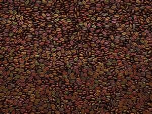 Unsorted Coffee beans texture or ... | Stock Photo | Colourbox