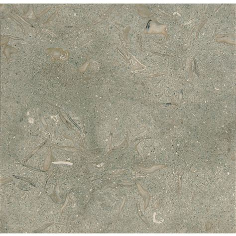 olive green honed limestone tiles 12x12 marble system inc