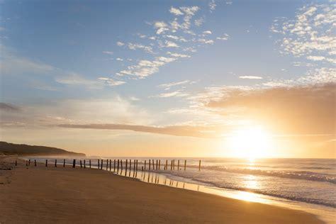 sunrise  st clair beach dunedin living