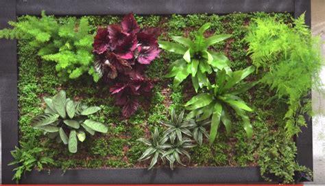 Ideas Para Hacer Un Jardín Interior En Casa