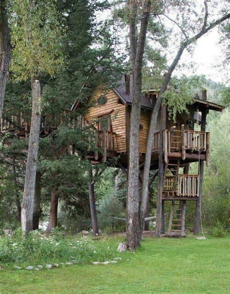 dream tree house treehouses pinterest