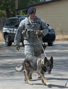 Security Forces Military Working Dog Handler