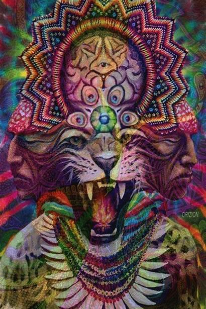 Hallucination Hallucinate Acid Trippy Trip Lsd Illuminati