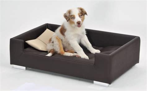 chien canapé canapé pour chien brun beige panier et corbeille