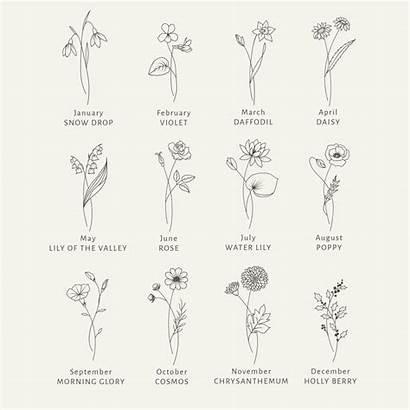 Svg Clipart Blumen Geburtsmonat Floral Bundle