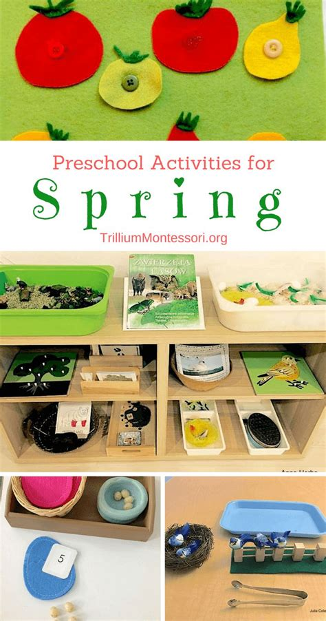 12 best montessori shelves images on 693 | 630184856a18b95e226c23436ec4fce7 montessori preschool preschool curriculum