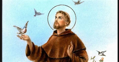 st francis of assisi patron 28 images you can