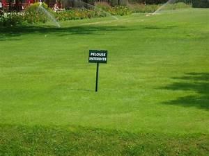 Semer Gazon Periode : scarifier pelouse table basse relevable ~ Melissatoandfro.com Idées de Décoration