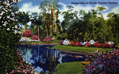 cypress gardens fl florida memory azalea time in florida cypress gardens