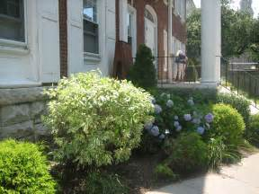 Shrubs for Front of House Bushes Landscaping