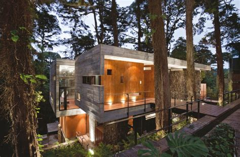 Beautiful Brazilian House Built Up And Around A Tree :  14 Houses Built Around & Within