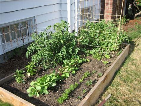 easy vegetable home gardening ideas easy diy  crafts