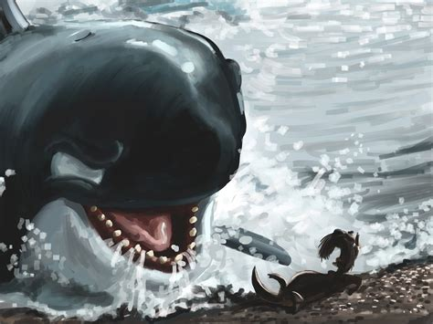Killer Whale Attacks On Humans Videos
