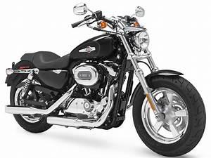 Harley Davidson Tail Light Harness