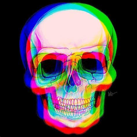 skull  shirt lola camisetas